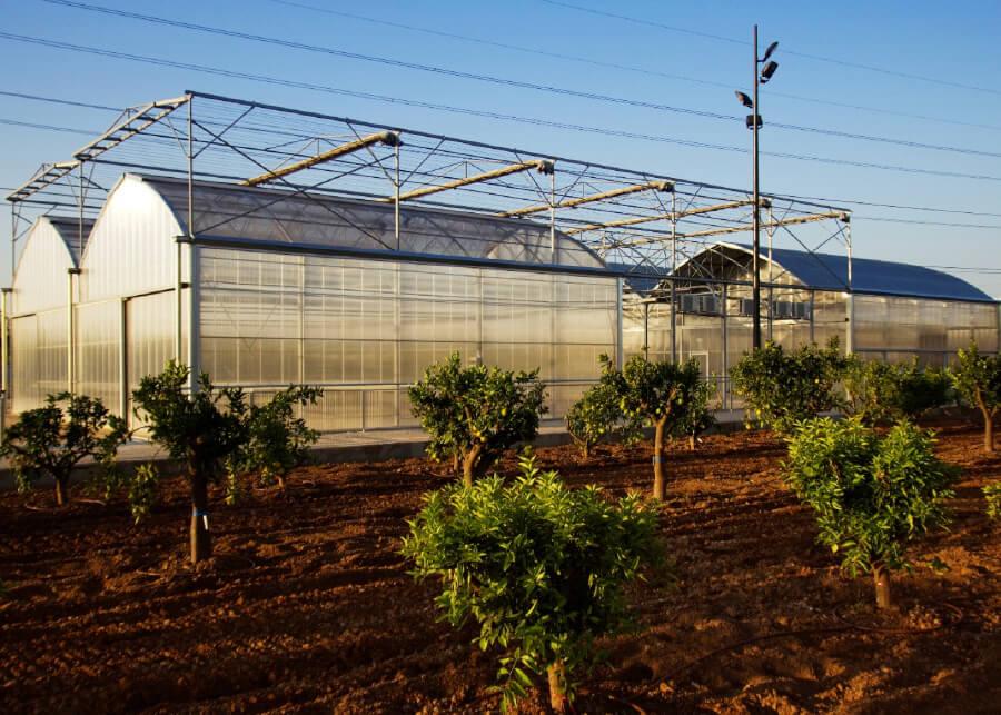 Binaria-CGC-17-Redaccion-del-proyecto-y-ejecucion-de-las-obras-para-desarrollo-de-huertos-urbanos