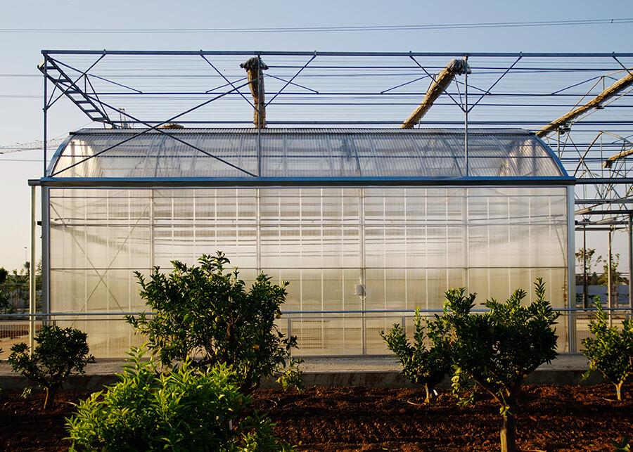 Binaria-CGC-17-Redaccion-del-proyecto-y-ejecucion-de-las-obras-para-desarrollo-de-huertos-urbanos-3